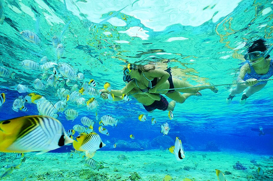 snorkeling port barton